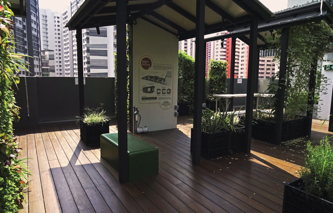 Onewood Decking at Educational Institute Rooftop Ecogarden